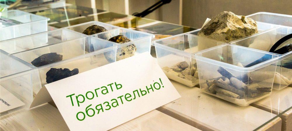 Каким было «Детство Земли», приглашает посмотреть Музей природы