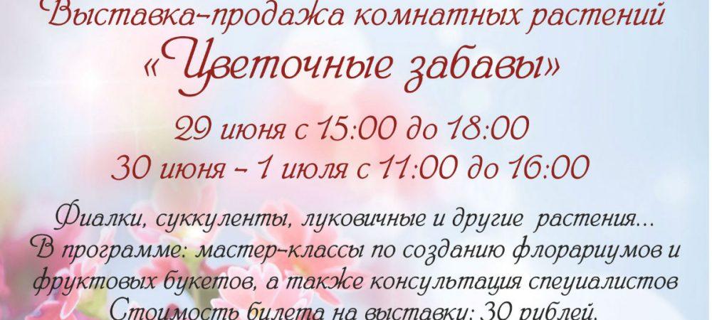 Мастер-классы и выставка-продажа комнатных растений «Цветочные забавы»
