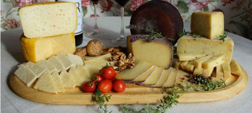 Первый сырный фестиваль пройдет в Костроме 30 июня